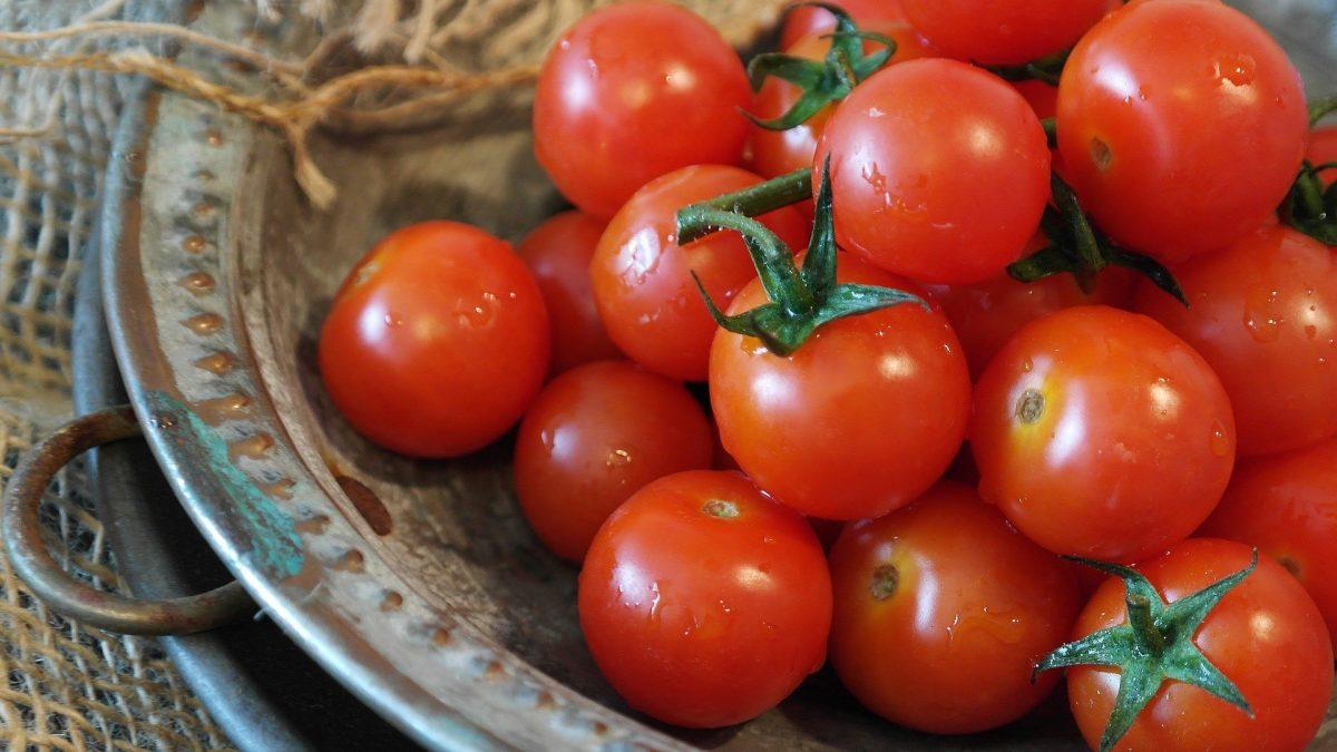 por qué los tomates ya no saben a tomate